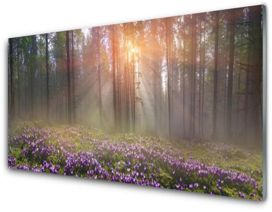 Tablou pe sticla acrilica Pădure Flori Natura Roz Verde Maro