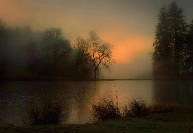 Lovely Dawn Fototapet, (416 x 290 cm)