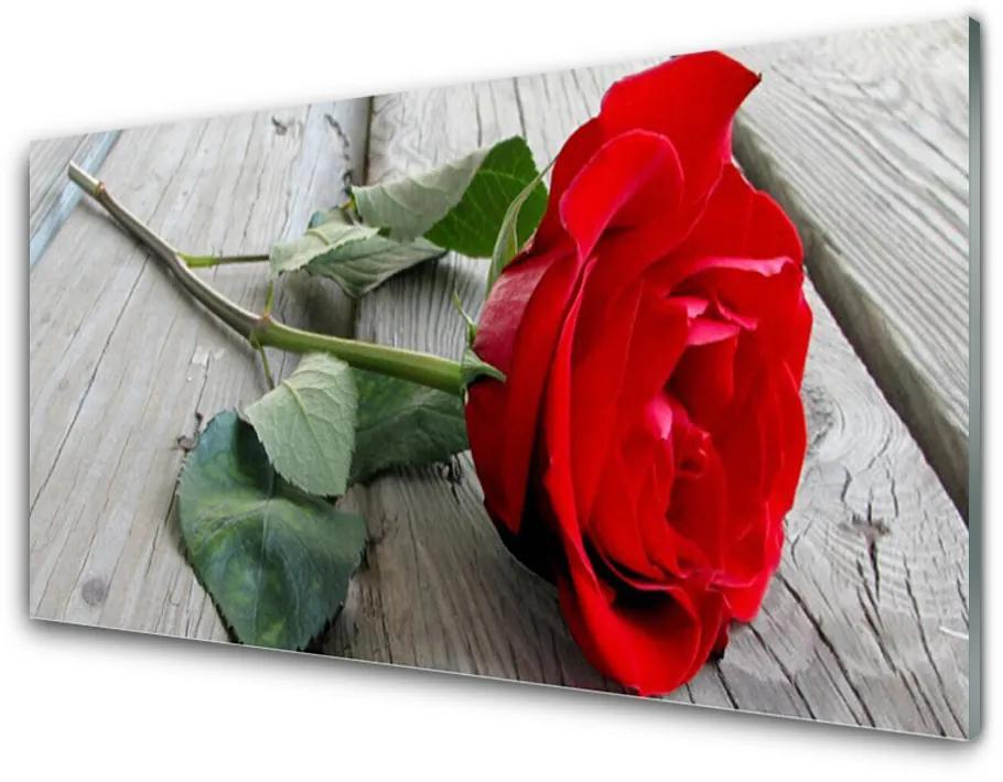 Tablou pe sticla Rose Floral Roșu Verde