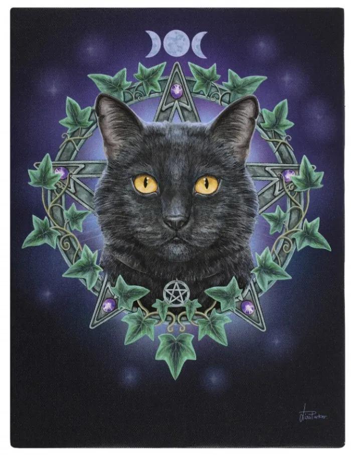 Tablou canvas Pisica Fermecata 19x25cm Lisa Parker