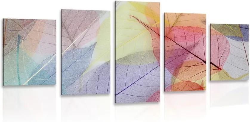 Tablou 5-piese vene pe frunze colorate
