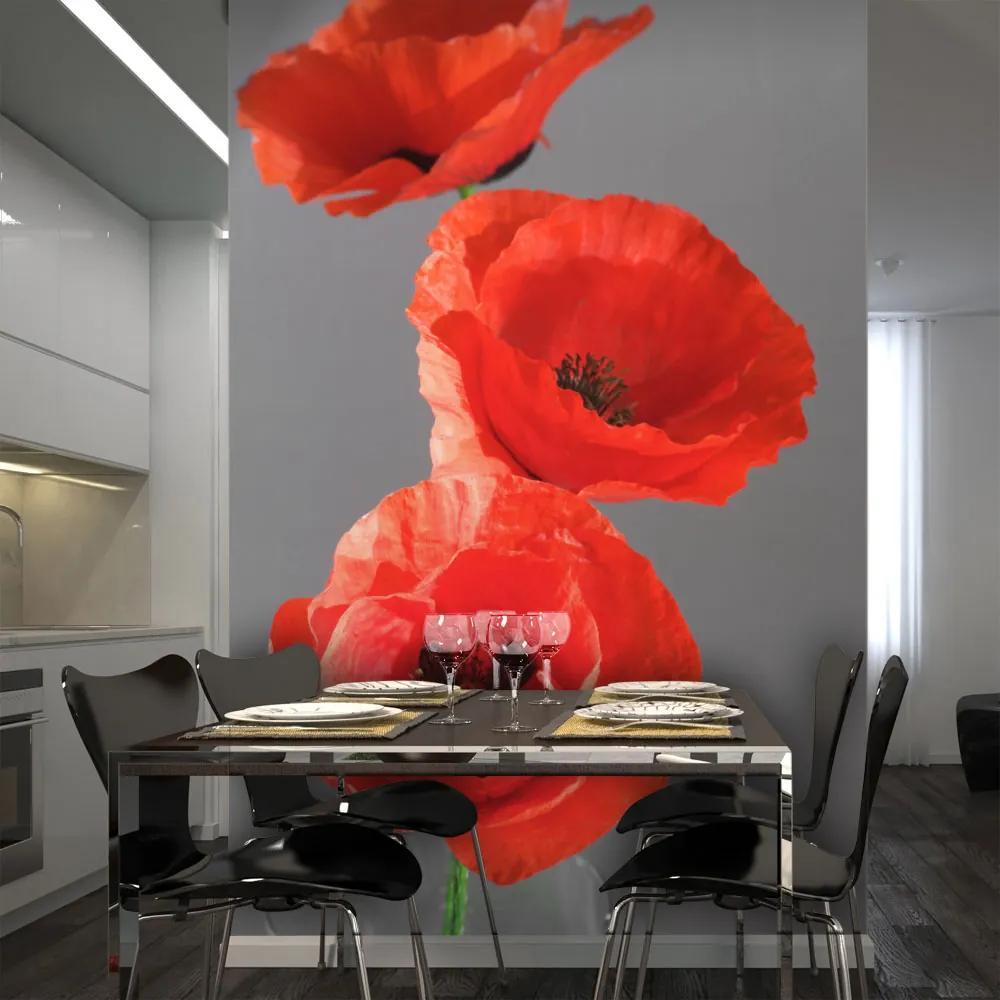 Fototapet Bimago - Two poppies + Adeziv gratuit 200x154 cm