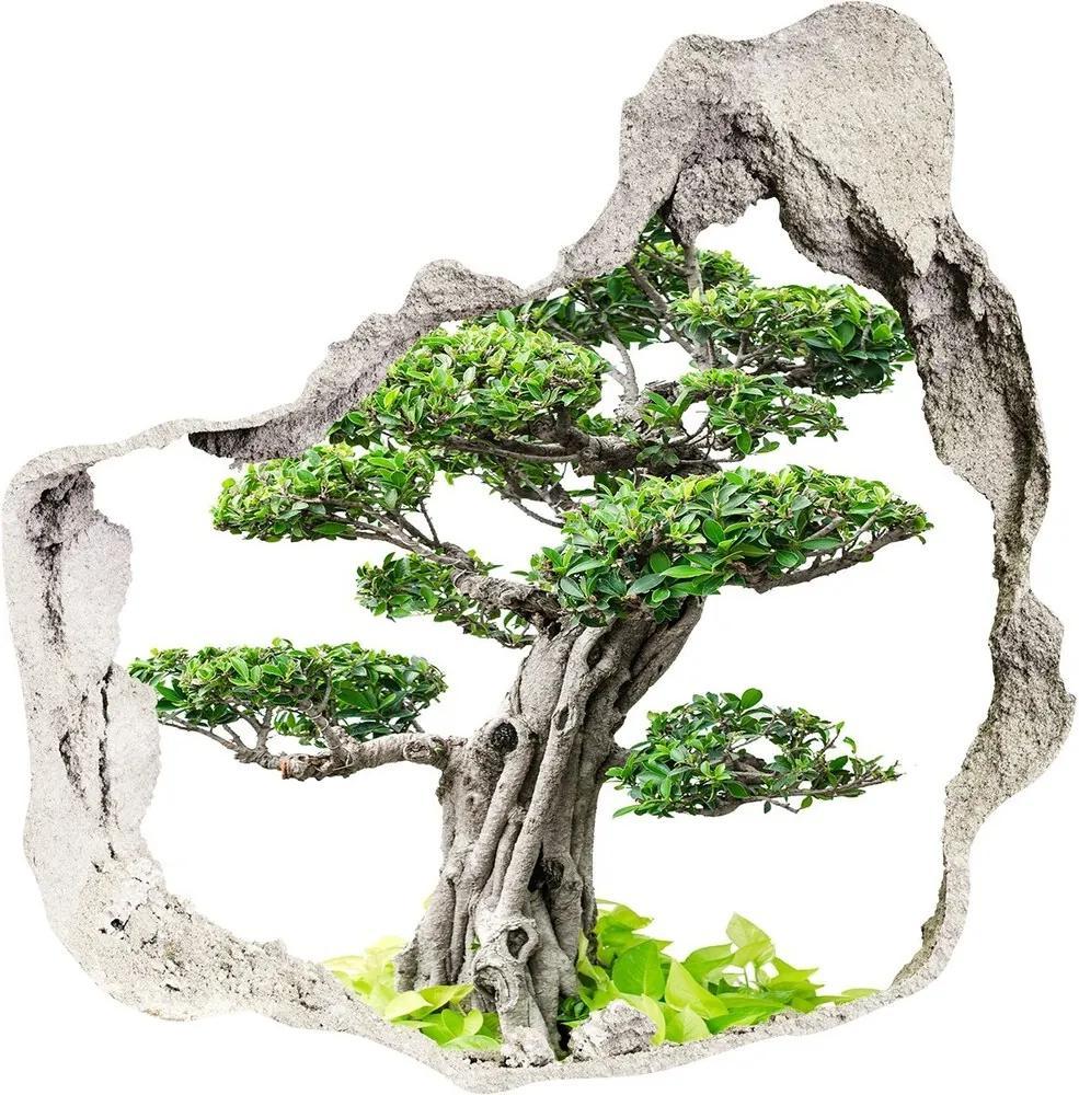 Autocolant 3D gaura cu priveliște Copac bonsai