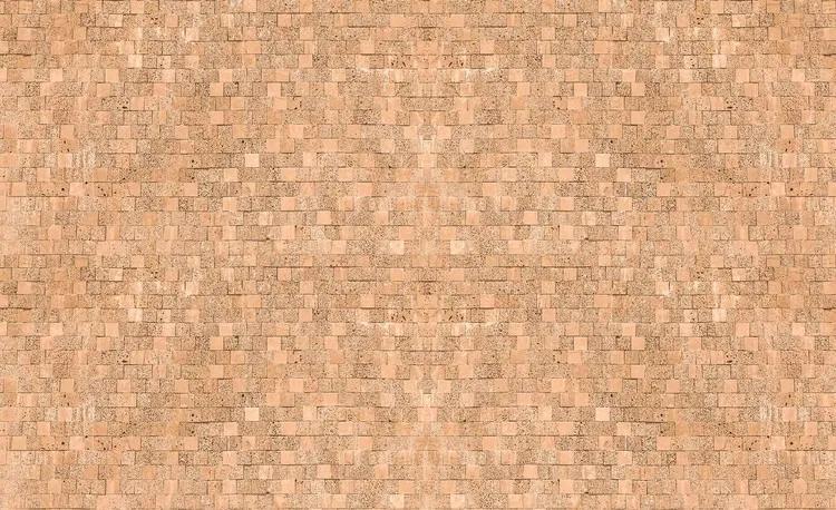 Brick Wall Fototapet, (416 x 254 cm)