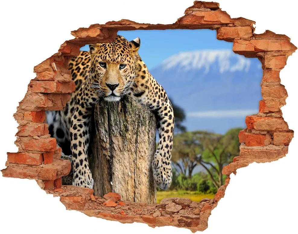 Fototapet 3D gaură în perete Leopard pe un ciot de copac