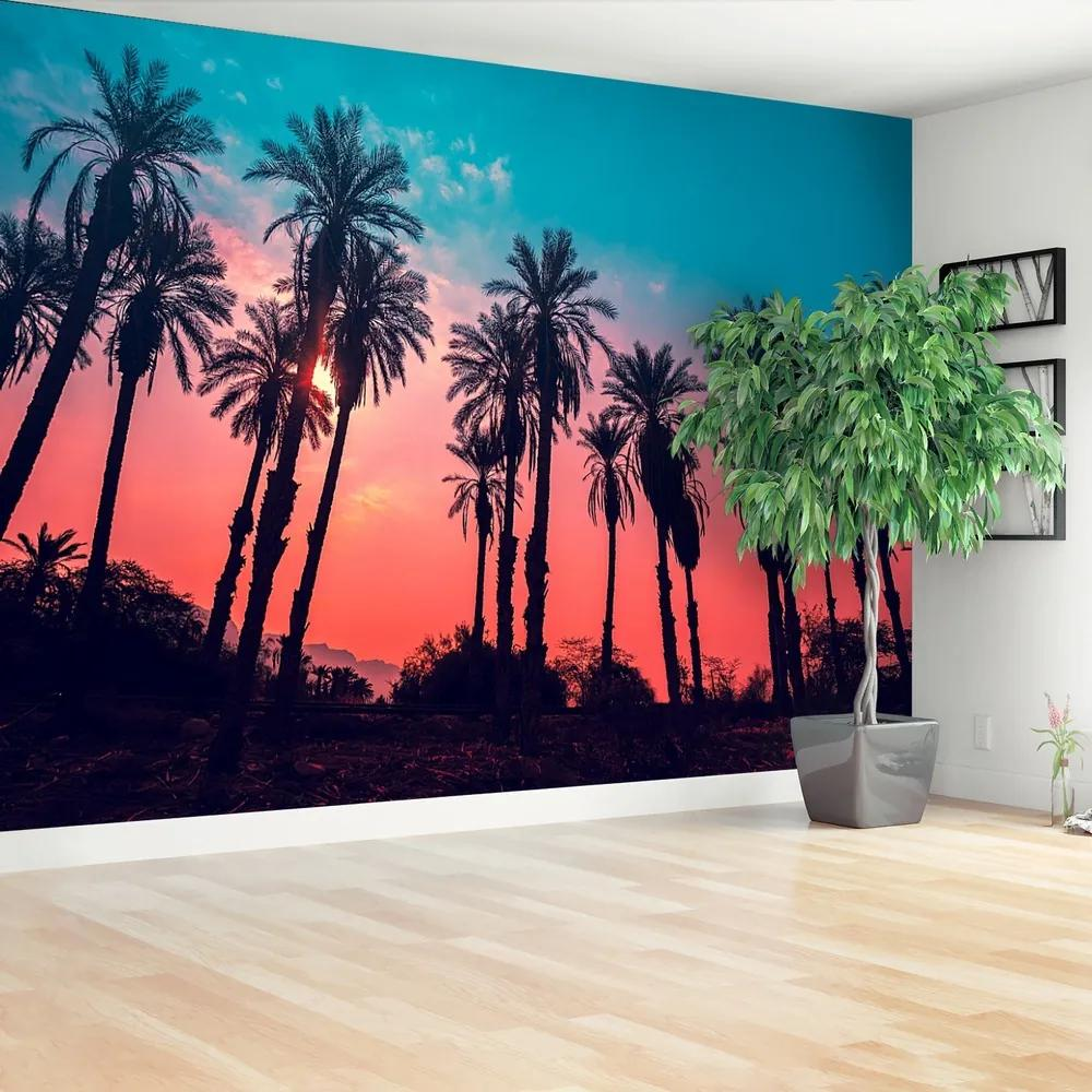 Fototapet Tropical Palm Copaci