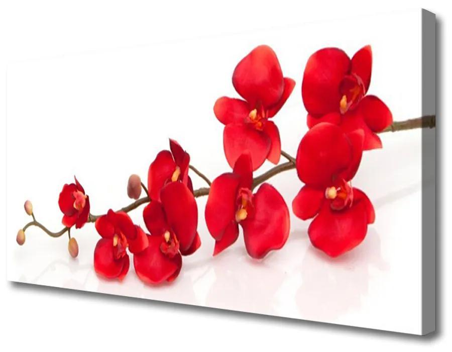Tablou pe panza canvas Flori Floral Roșu