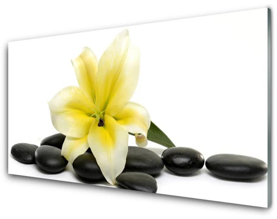 Tablou pe sticla acrilica Pietrele de flori Arta Alb Verde Negru