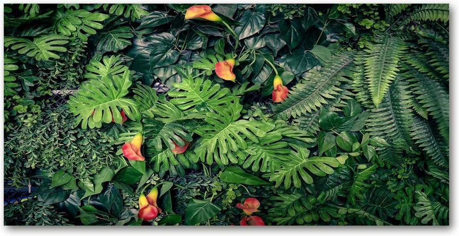 Fotografie imprimată pe sticlă Junglă exotice