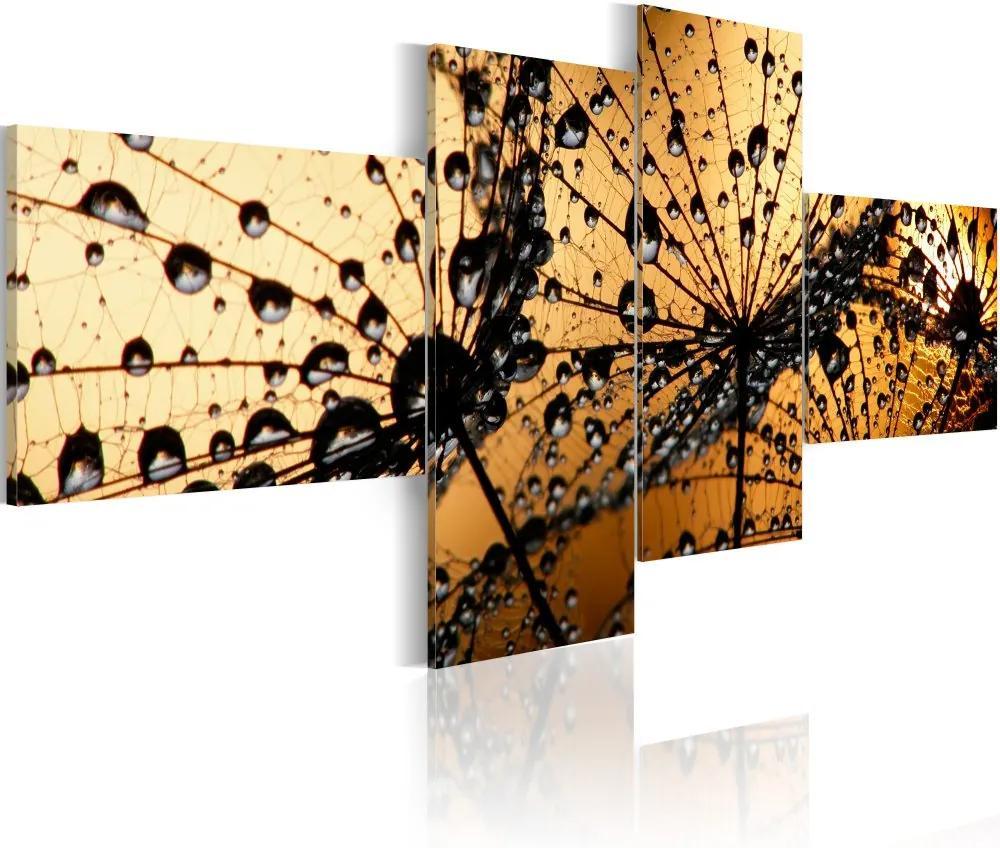 Bimago Tablou - Dandelions In Morning Fogg 100x45 cm