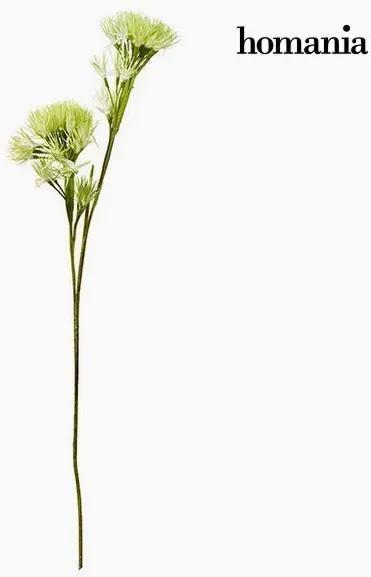 Floare Spumă Verde by Homania