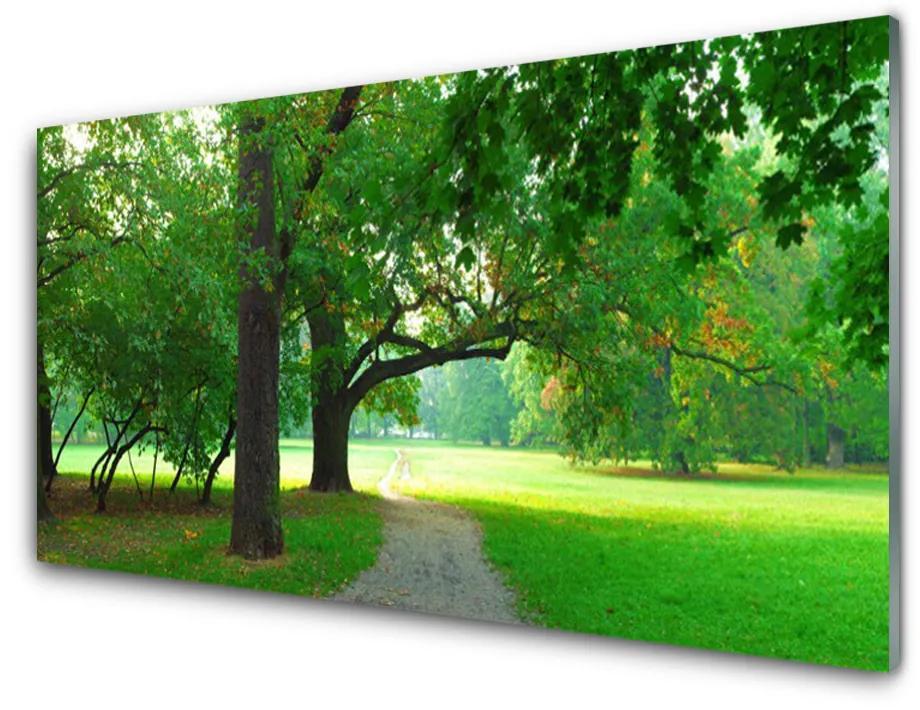 Tablou pe sticla acrilica Poteca Copaci Natura Brun Verde