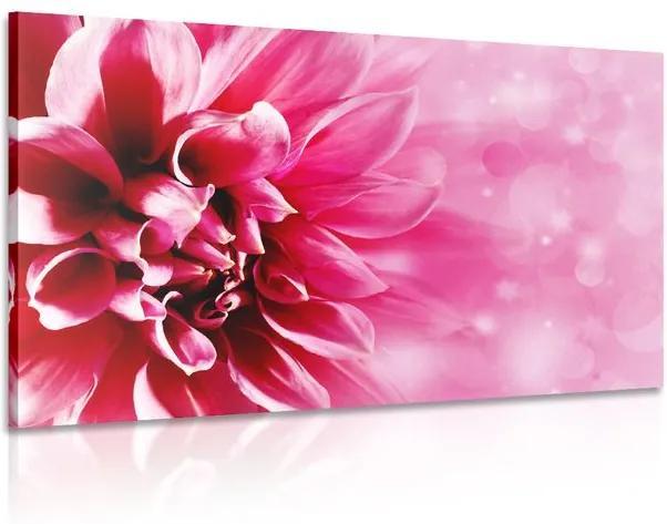 Tablou floare roz