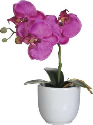 Floare artificiala, orhidee, h 26 cm, violet
