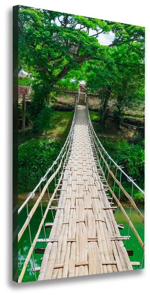 Pictură pe pânză Pod suspendat