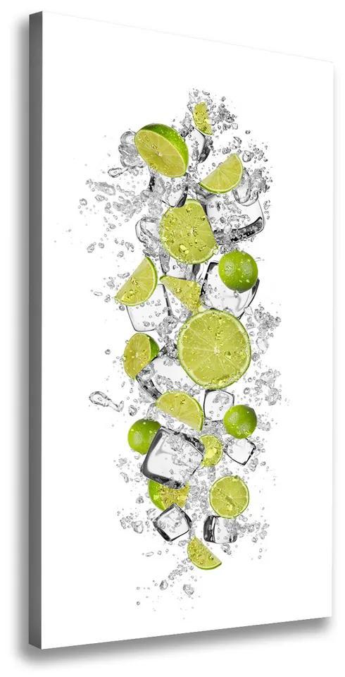 Tablou pe pânză Lămâi verzi