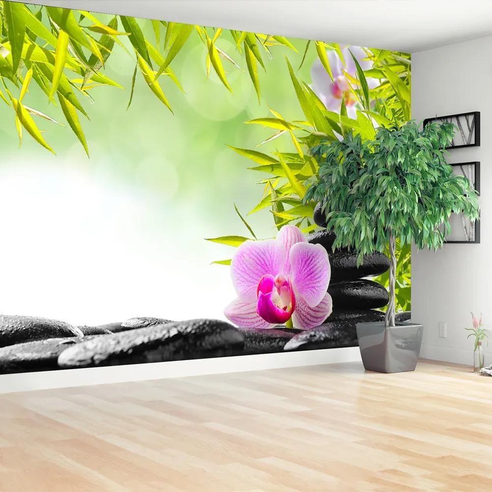 Fototapet Bambus și Orchid