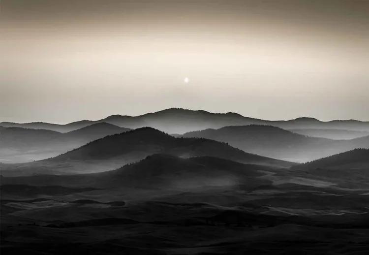 Palouse Fields Fototapet, (416 x 290 cm)