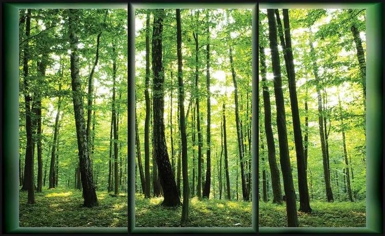 Forest Trees Green Nature Fototapet, (208 x 146 cm)