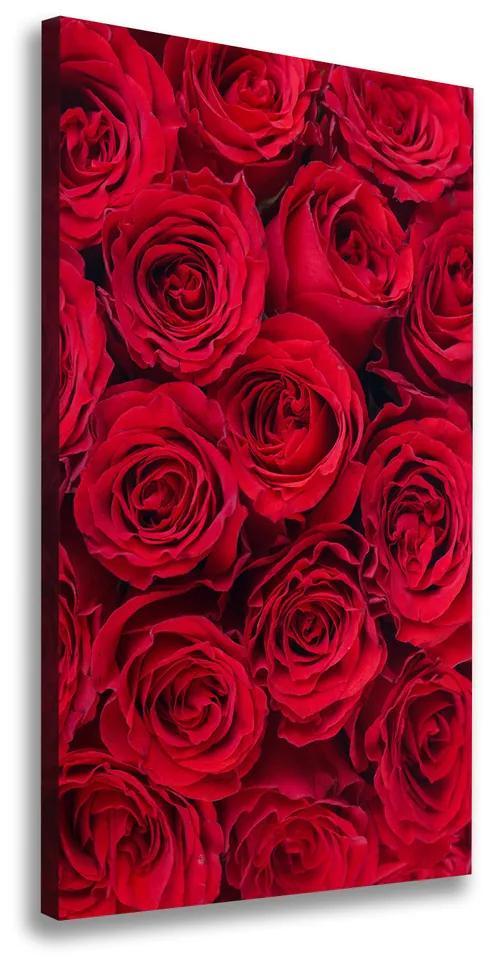 Tablou pe pânză canvas Trandafir roșu