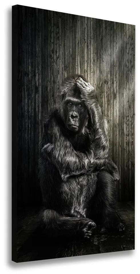 Tablou pe pânză Gorilă
