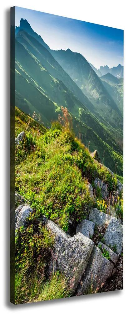 Tablou canvas Munte de vară