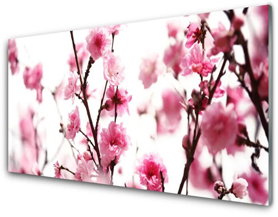 Tablou pe sticla acrilica Ramuri de flori Floral Brown roz
