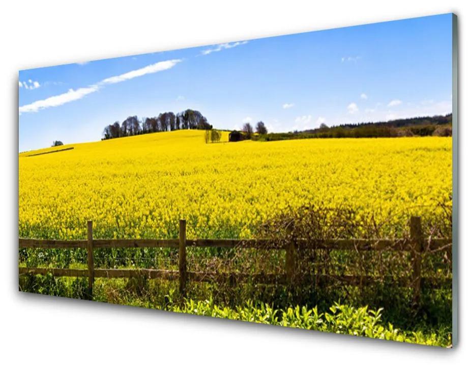 Tablou pe sticla acrilica Câmp Peisaj verde