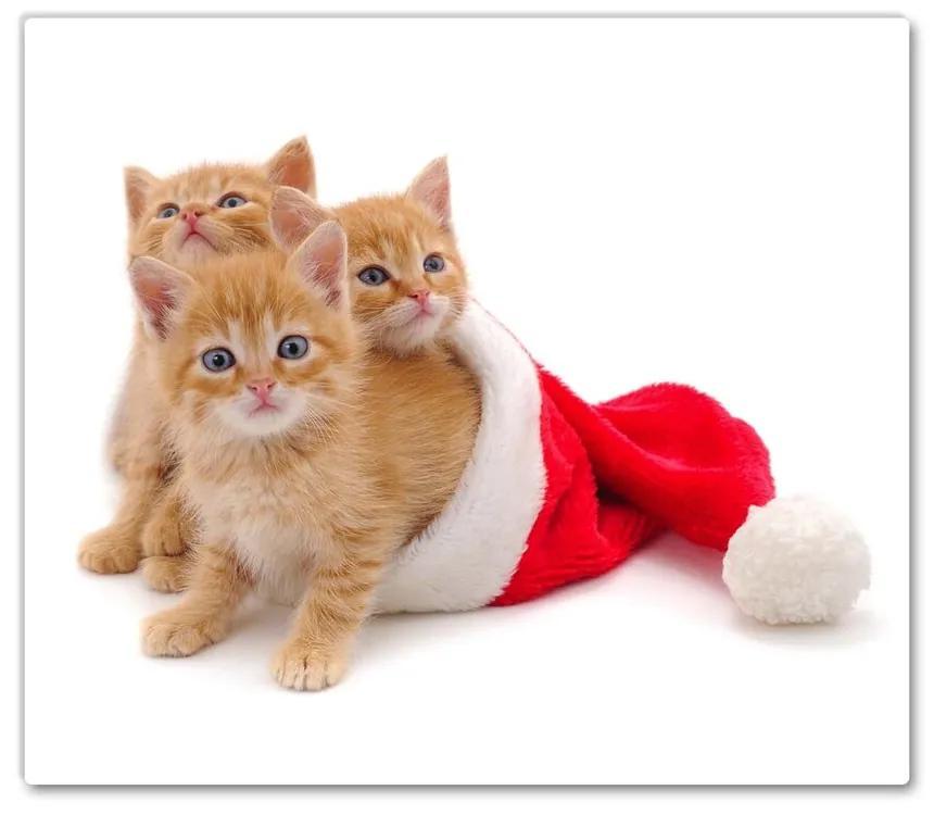 Tocator din sticla Pisici. Moș Crăciun