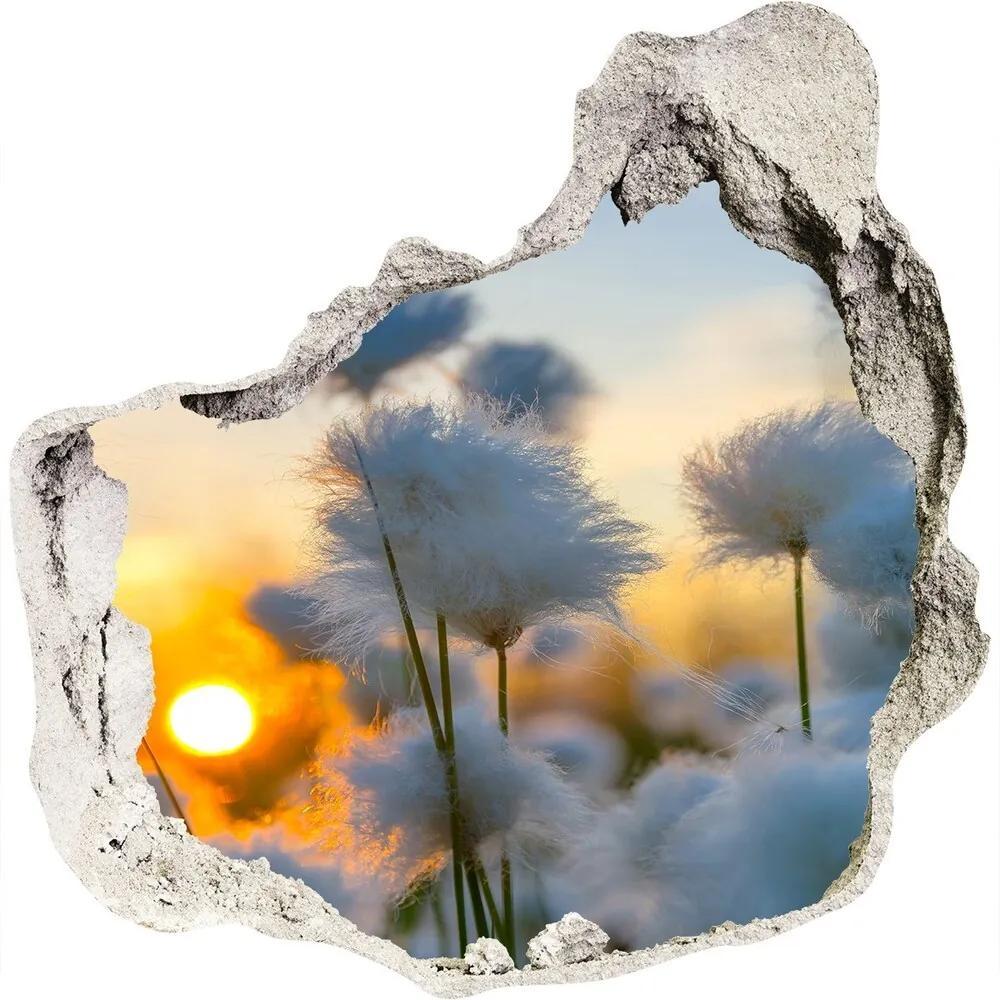 Autocolant autoadeziv gaură Bumbac-iarbă