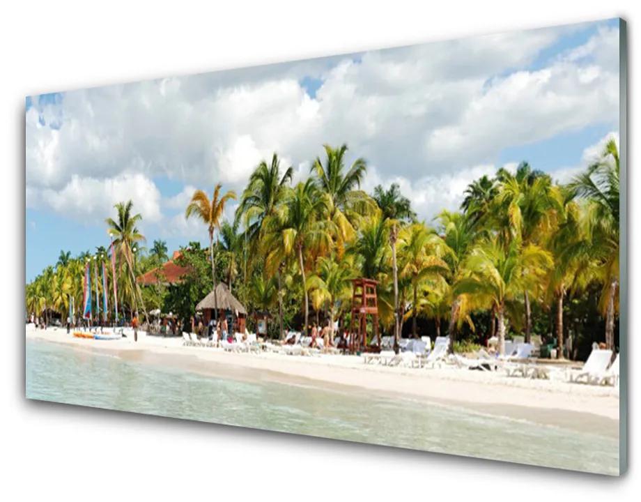 Tablou pe sticla acrilica Palm Beach Copaci Peisaj Brun Verde