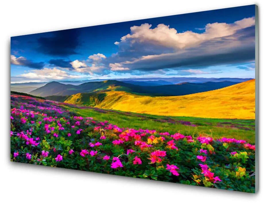Tablou pe sticla acrilica Meadow Flori Natura Verde Albastru Roz Roșu