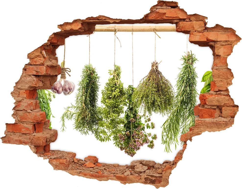 Nálepka diera na stenu betón Bylinky na povrázku