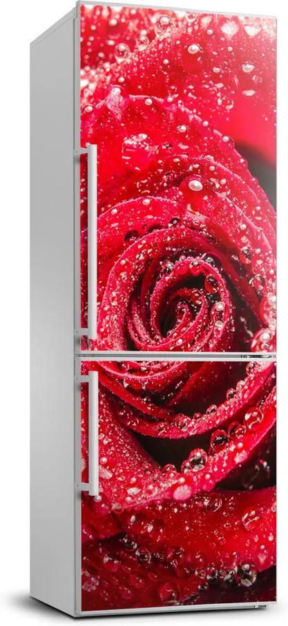 Foto Autocolant pentru piele al frigiderului Trandafir roșu