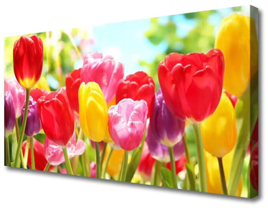Tablou pe panza canvas Lalele Floral Roșu Galben