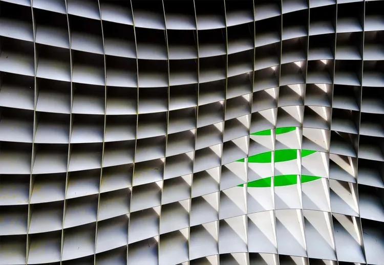 Green Beyond Fototapet, (368 x 254 cm)