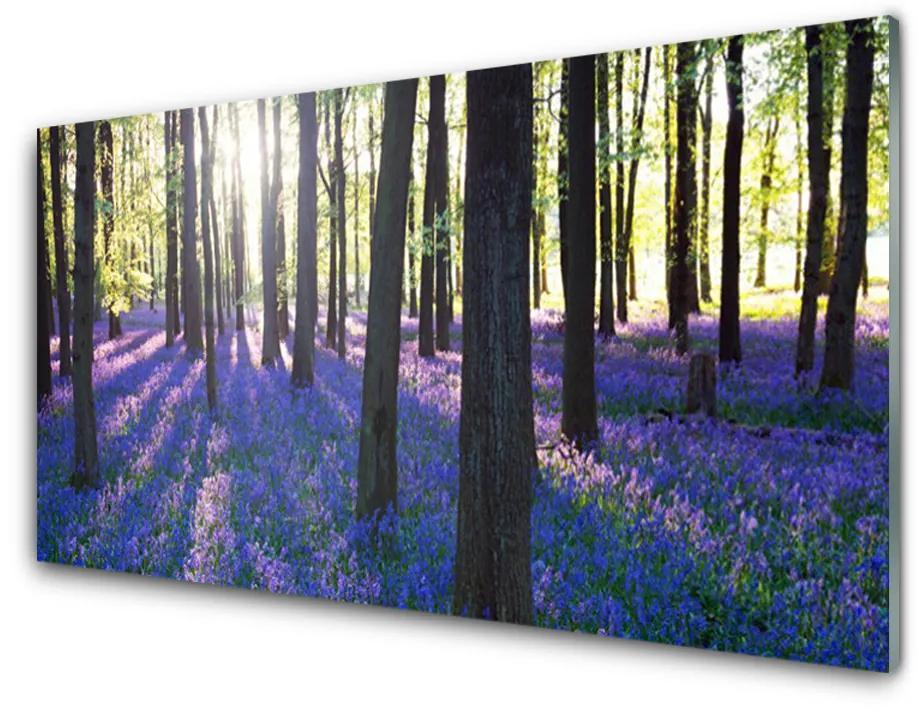 Tablou pe sticla acrilica Pădure Natura Brown Violet