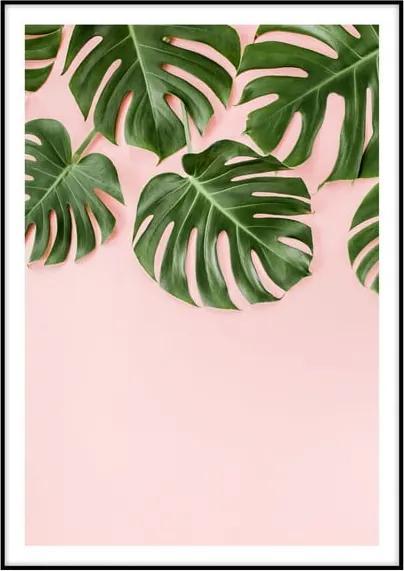 Poster Imagioo Monstera Leaves, 40 x 30 cm