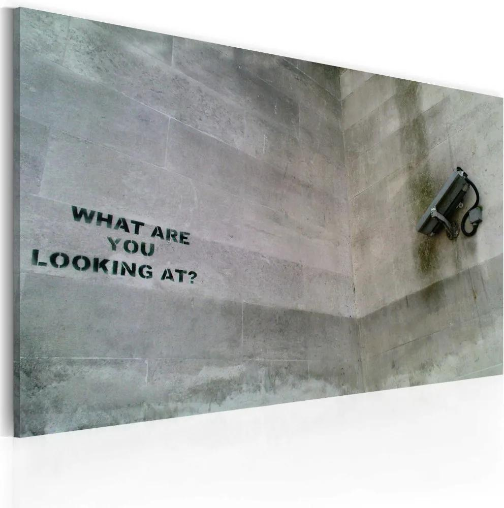 Tablou - What are you looking at? (Banksy) 60x40 cm