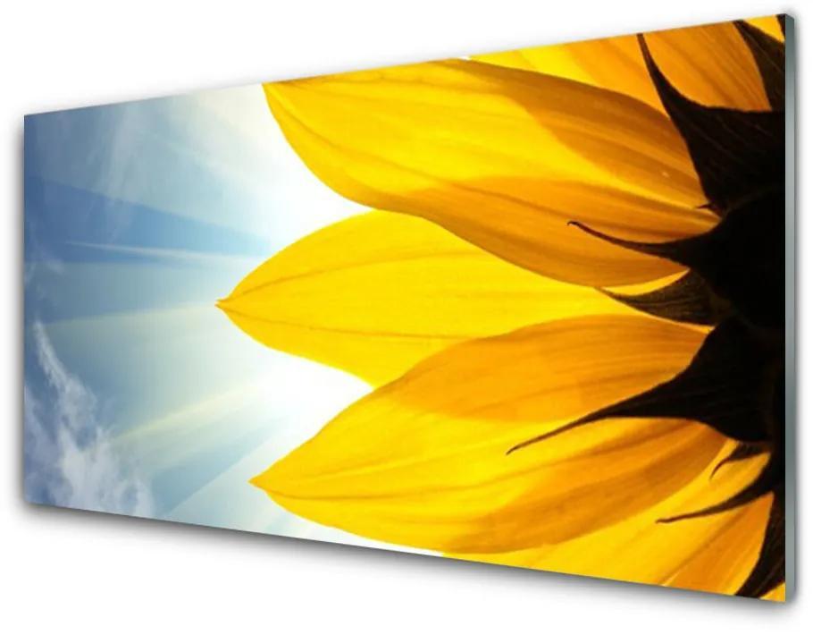 Tablou pe sticla acrilica Petale Floral Albastru Galben