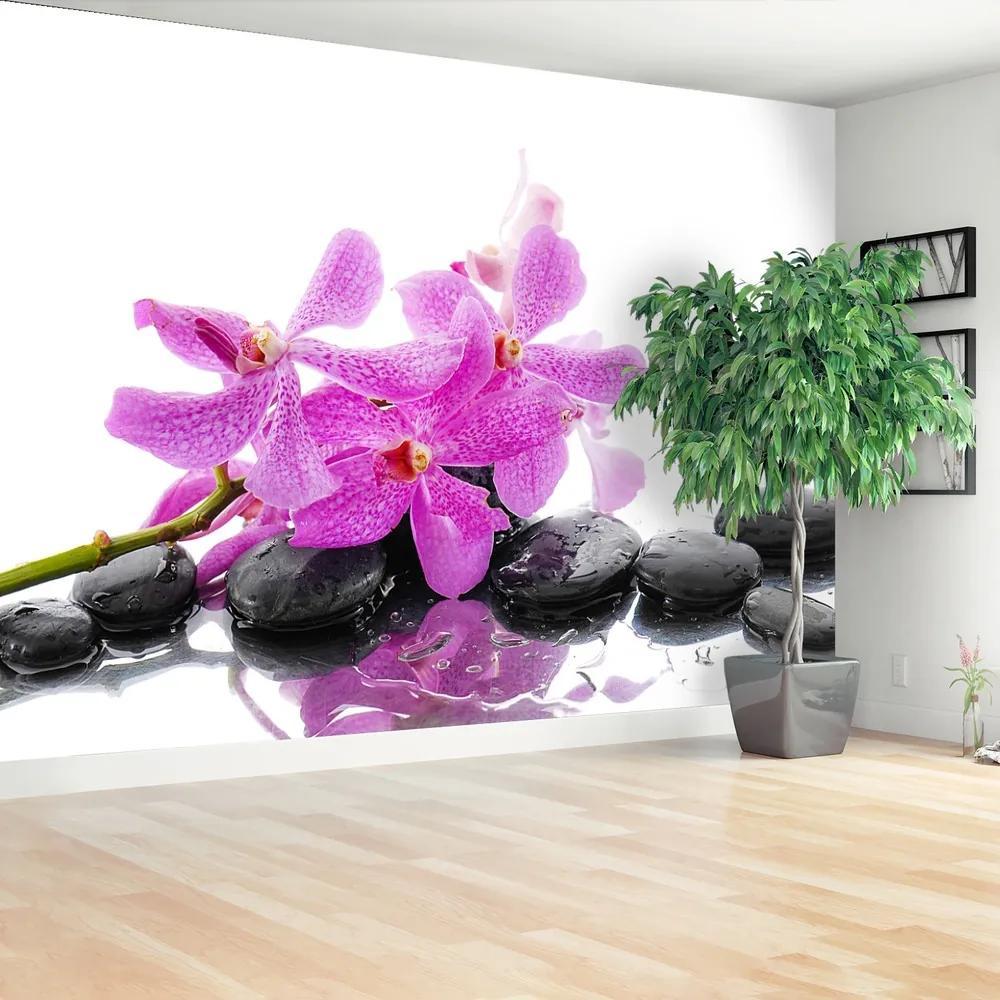 Fototapet roz Orhidee