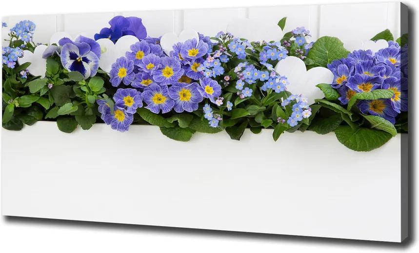 Tablouri tipărite pe pânză Flori albastre