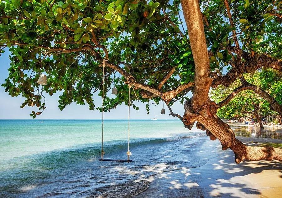 Fototapet: Leagăn pe plajă - 254x368 cm