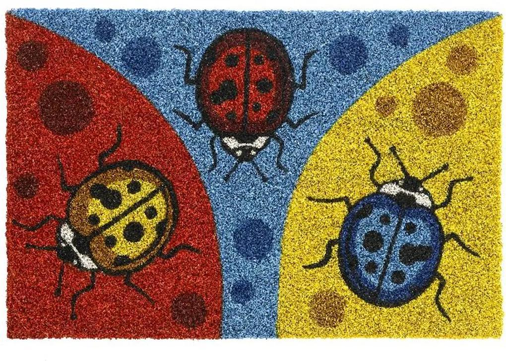 Covoras Intrare Miria, Cocos, Multicolor, 40x60