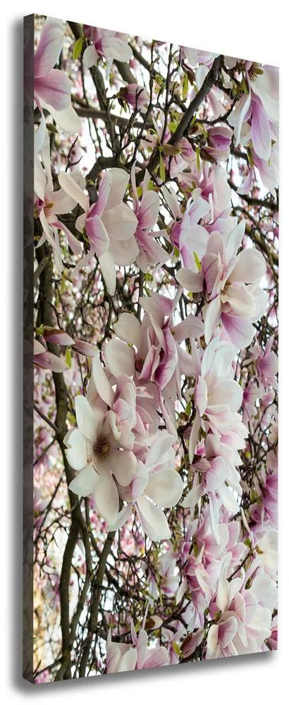 Print pe pânză Flori magnolia
