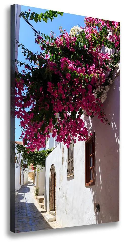 Tablou canvas Rhodes Grecia