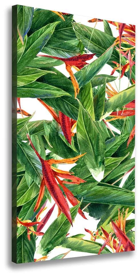 Imprimare tablou canvas Strelitzia reginae