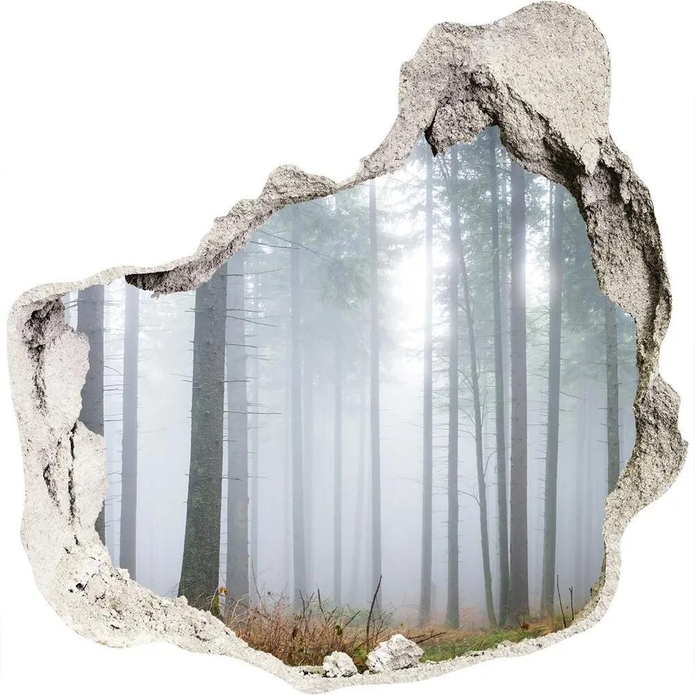 Fototapet 3D gaură în perete Ceață în pădure