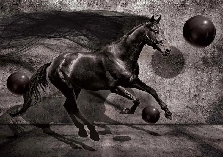 Horse Spheres Black 3D Fototapet, (368 x 254 cm)
