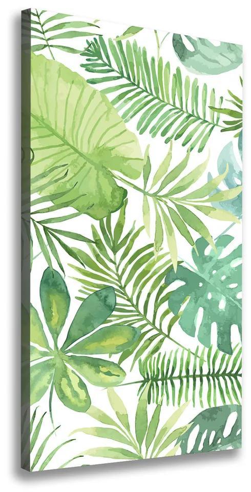 Print pe pânză Frunze tropicale